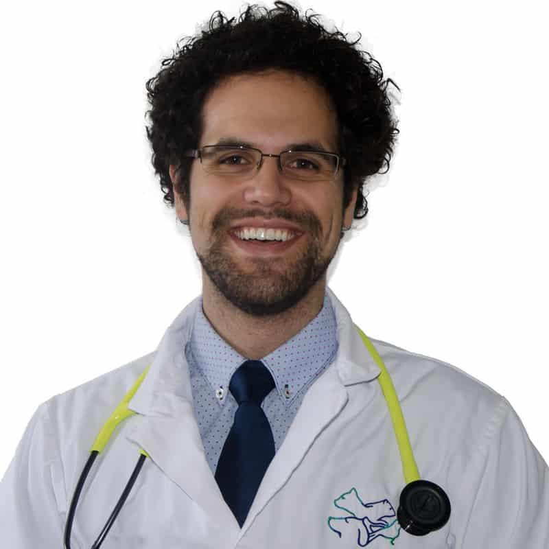 Dr-Domenic-Ciarlillo
