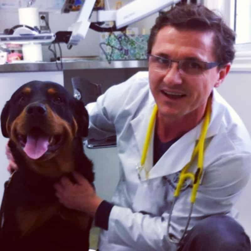 Dr-Marku